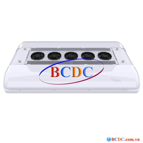 BCD.B.06